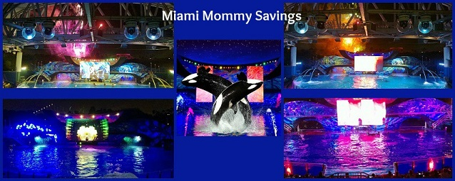 Shamu Rocks Collage