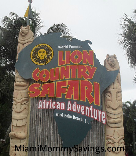 World Famous Lion Country Safari: African Adventure in the South ...