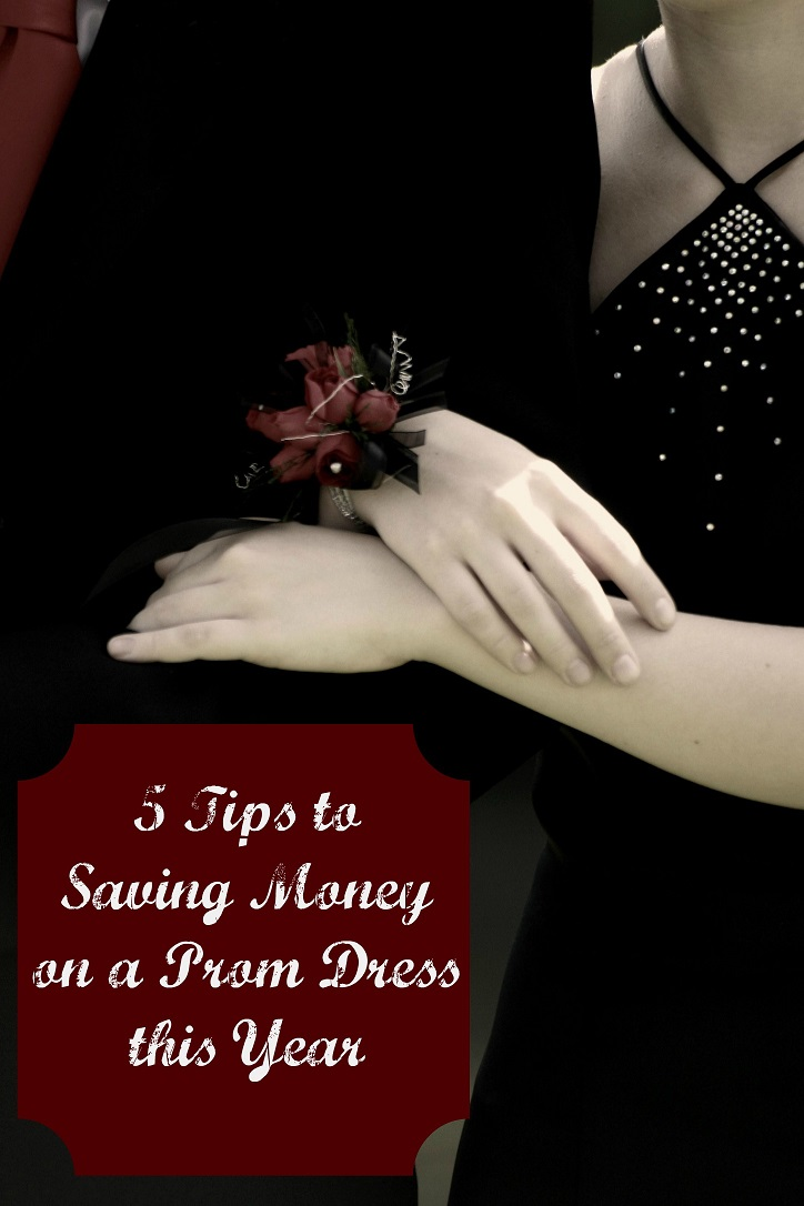 5 Tips to Saving Money on a Prom Dress this Year!