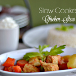 Slow-Cooker-Chicken-Stew-Miami-Mommy-Savings
