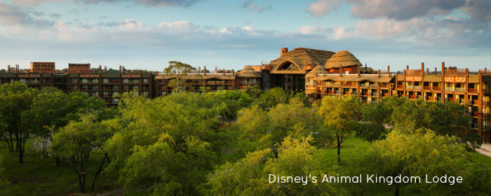 Animal Kingdom Lodge: A Wild Experience for Everyone!