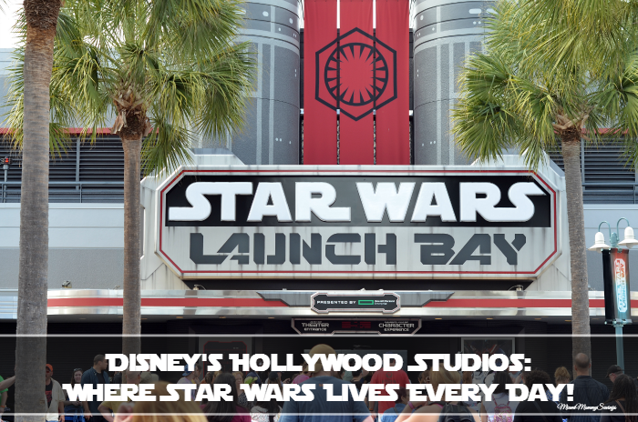 Disney's Hollywood Studios: Where Star Wars Lives Every Day! More at MiamiMommySavings.com