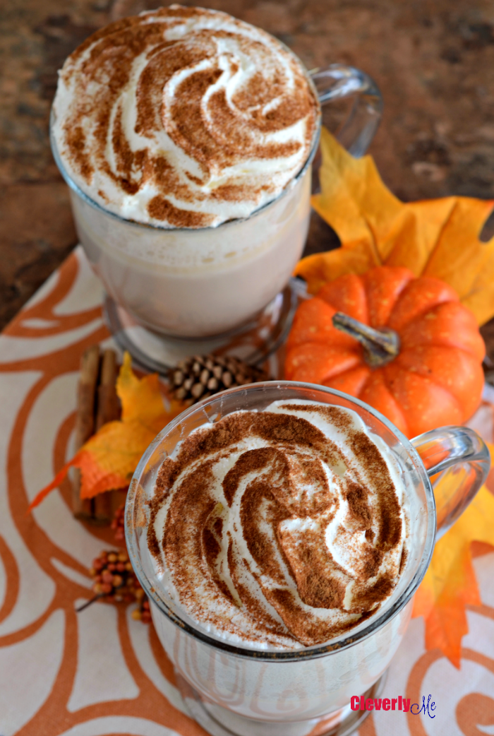 This rich and creamy Pumpkin Spice White Hot Chocolate drink is absolutely the perfect treat to enjoy during the fall season. Get the recipe at CleverlyMe.com