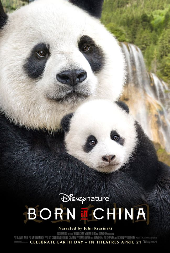 Learn more about Born in China in our Born In China Movie Review. More at CleverlyMe.com