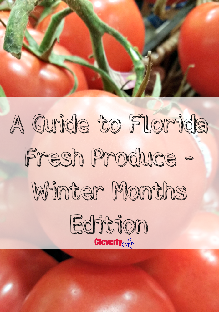 A Guide to Florida Fresh Produce – Winter Months Edition