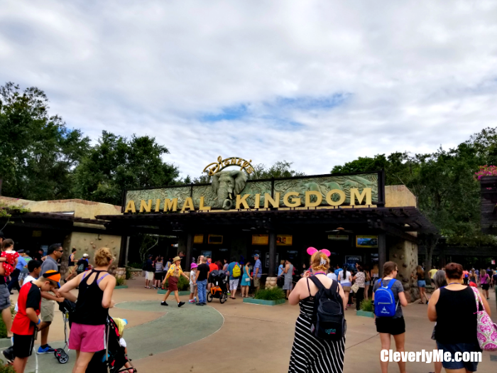 What's New from Walt Disney World This Year? More at CleverlyMe.com