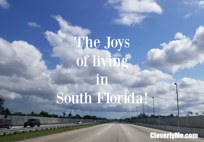 Do you live in South Florida? Did you go through Hurricane Irma? Read all about our adventure through Hurricane Irma in The joys of living in South Florida! More at CleverlyMe.com