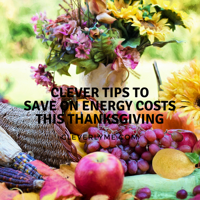 Clever Tips to Save on Energy Costs This Thanksgiving