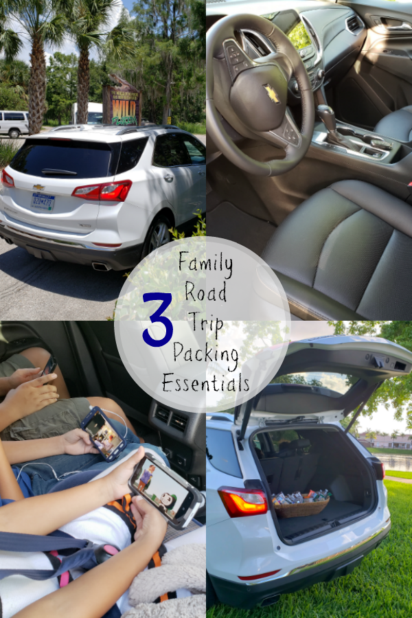If you are getting ready to take a road trip. Here you will find three Family Road Trip Packing Essentials my family always brings on ANY road trip. More at CleverlyMe.com